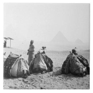 カイロエジプト、ラクダのジョッキーのギーザのピラミッド(NR) タイル