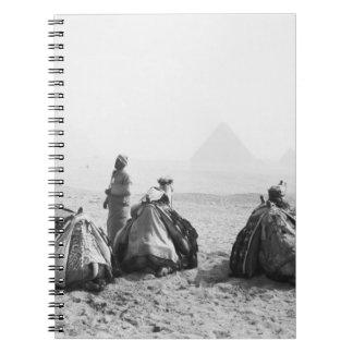 カイロエジプト、ラクダのジョッキーのギーザのピラミッド(NR) ノートブック