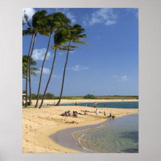 カウアイ島の島にある池公園に塩を加えて下さい ポスター