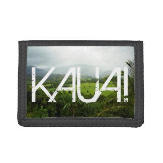 カウアイ島、ハワイの景色場面