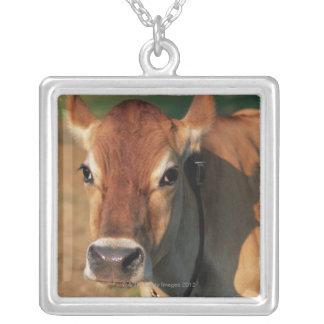 カウベルを身に着けている牛 シルバープレートネックレス