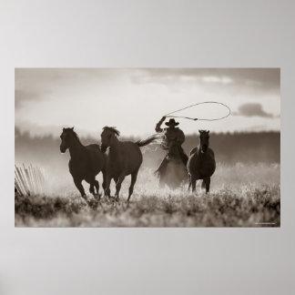 カウボーイのLassoingの馬の白黒写真 ポスター