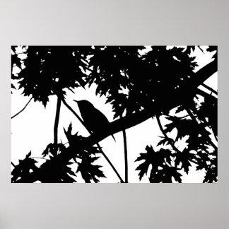 カエデの木の黒く及び白いイエミソサザイのシルエットを描いて下さい ポスター