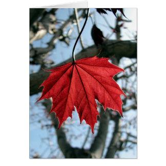 カエデの葉の挨拶状 カード