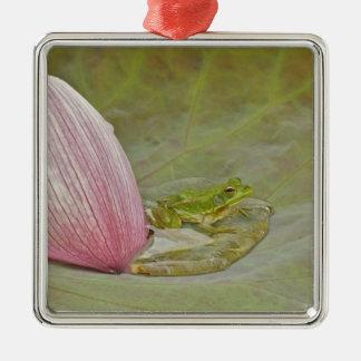 カエルおよびはすの花の花弁、中国、 メタルオーナメント