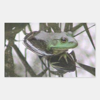 カエルの反射のステッカー 長方形シール