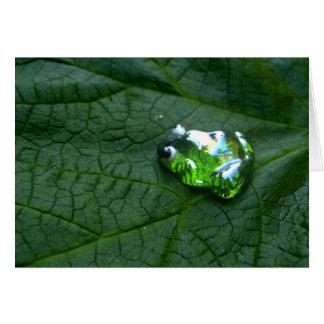 カエルの緑 カード