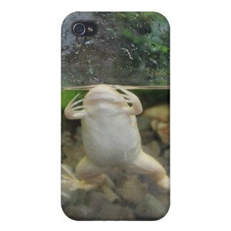 カエルの腹 iPhone 4/4S CASE