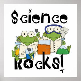 カエル科学の石 ポスター