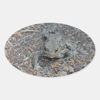 カエル|森林|床 卵形シール・ステッカー