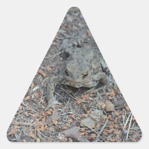 カエル 森林 床 三角形シールステッカー