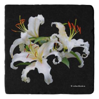 カサブランカエレガントな白い東洋ユリ トリベット