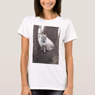 カシの猫 Tシャツ