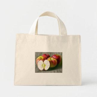 カスタマイズピンクレディー- ミニトートバッグ