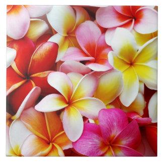 カスタマイズプルメリアのFrangipaniのハワイの花 正方形タイル大
