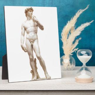 カスタマイズミケランジェロのデイヴィッドの彫刻 フォトプラーク