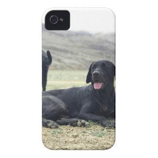 カスタマイズ可能で黒いラブラドル・レトリーバー犬 Case-Mate iPhone 4 ケース