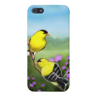 カスタマイズ可能なアメリカのGoldfinchesのiPhoneの場合 iPhone SE/5/5sケース