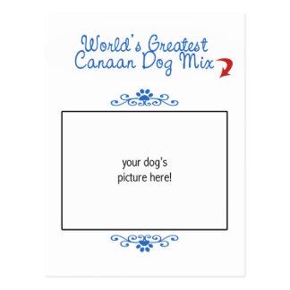 カスタムな写真! 世界の最も素晴らしいCanaan犬の組合せ ポストカード