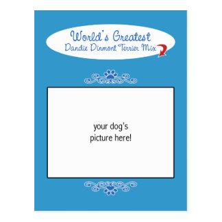 カスタムな写真! 世界の最も素晴らしいDandie Dinmontの組合せ ポストカード