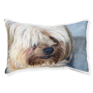 カスタムな屋内犬のベッド---小さい スモールドッグベッド