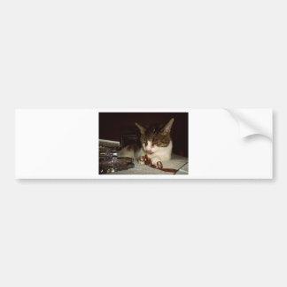 カセットのために空腹な猫 バンパーステッカー