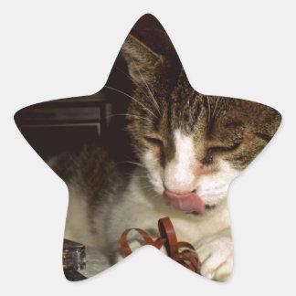 カセットのために空腹な猫 星シール