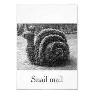 カタツムリ郵便のユニークな、元の黒い及び白 カード