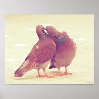 カップルの写真に接吻しているレトロハト愛鳥 ポスター