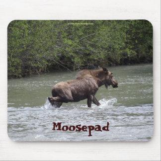 カナダのアメリカヘラジカのおもしろいな野性生物のマウスパッド マウスパッド