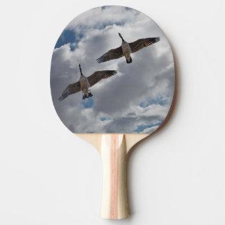 カナダのガチョウ 卓球ラケット