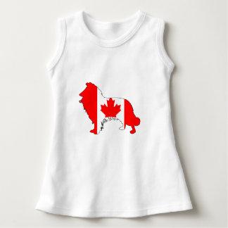 カナダのボーダーコリー ドレス