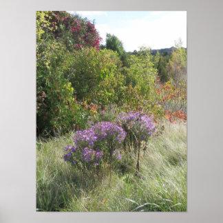 カナダの景色の紅葉の田園生きている木 ポスター