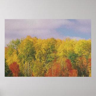 カナダの秋季: ロマンチックで官能的な低価格 ポスター