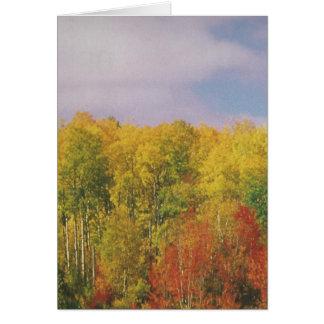 カナダの美しい景色ナイアガラ: 低価格のギフト グリーティングカード