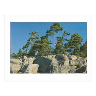カナダの美しい景色ナイアガラ: 低価格のギフト ポストカード
