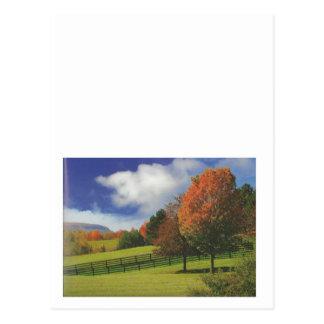 カナダの美しい景色ナイアガラ: 低価格のギフト 葉書き