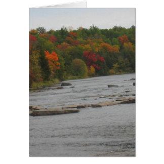 カナダトロントの秋季の意見 カード