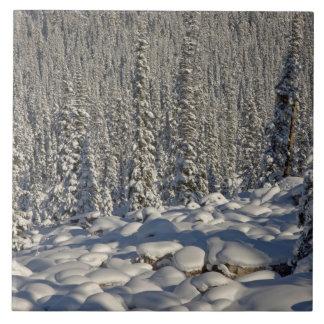 カナダ、アルバータのジャスパー国立公園 タイル