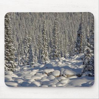 カナダ、アルバータのジャスパー国立公園 マウスパッド