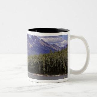 カナダ、アルバータのジャスパー国立公園。 大きい ツートーンマグカップ