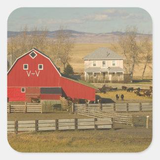 カナダ、アルバータのPincherの入り江: 赤い納屋及び牧場 スクエアシール
