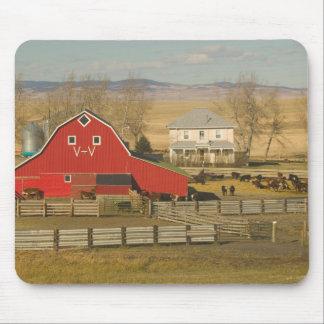 カナダ、アルバータのPincherの入り江: 赤い納屋及び牧場 マウスパッド