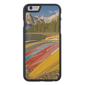 カナダ、アルバータ、バンフ国立公園、氷堆石 ケース