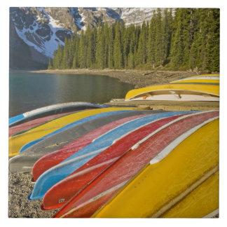 カナダ、アルバータ、バンフ国立公園、氷堆石 タイル