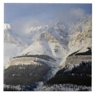 カナダ、アルバータ、バンフ国立公園。 眺めの タイル