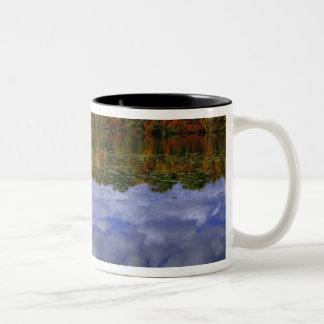 カナダ、オンタリオ。 秋色は公園に反映します ツートーンマグカップ