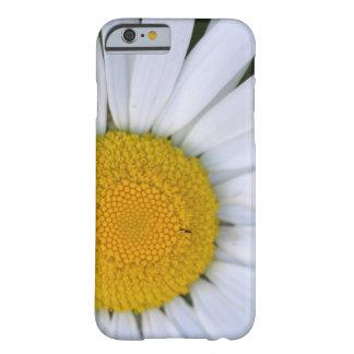 カナダ、ブリティッシュ・コロンビアのバンクーバー島8 BARELY THERE iPhone 6 ケース