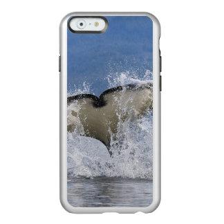 カナダ、ブリティッシュ・コロンビアのバンクーバー島、 INCIPIO FEATHER SHINE iPhone 6ケース