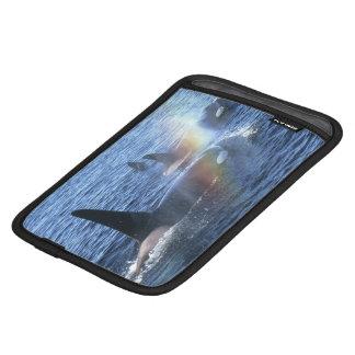 カナダ、ブリティッシュ・コロンビア、まっすぐのJohnstone、 iPad Miniスリーブ